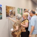 Exposición de pintura Hogar del Sur-2