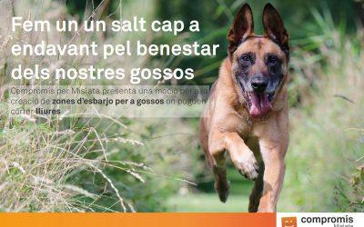zones-desbarjo-per-a-gossos