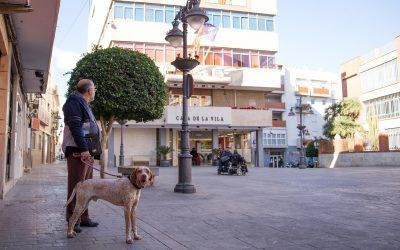 perro-en-la-plaza-del-ayuntamiento-de-mislata